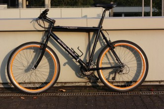 Bergamont Dark Dust MTB Speed-Bike