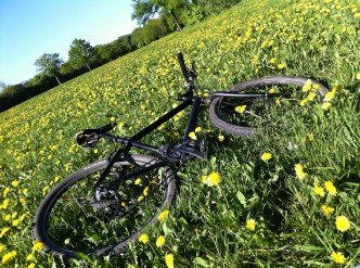 Frühlings-Check für Fahrräder